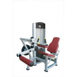 Maquina femoral sentado